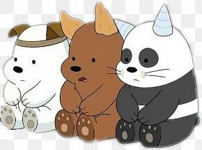 Bear - Bear Giant Panda T-shirt Desktop Wallpaper Cuteness PNG