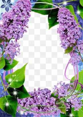 Lilac Transparent - Picture Frame Clip Art PNG