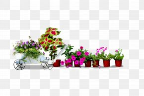Small Potted Plants - Flowerpot Bonsai Crock Houseplant PNG