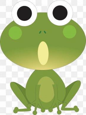Frog Vector - Tree Frog Animal Horse True Frog Shadow PNG