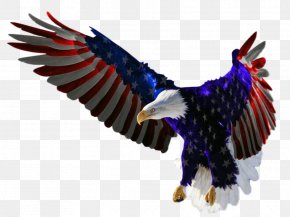United States - Flag Of The United States Independence Day Bald Eagle PNG