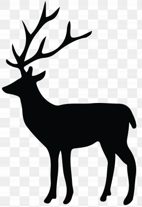 Deer Silhouette Transparent Clip Art Image - Reindeer Silhouette White-tailed Deer Clip Art PNG