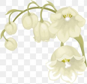 Lily Of The Valley - Cut Flowers May 1 Floral Design Petal PNG