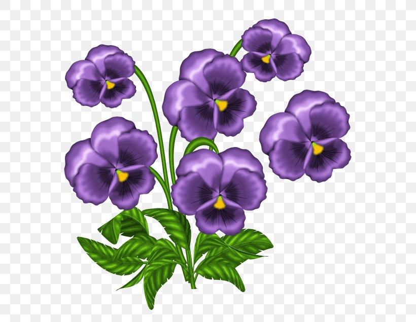 Violet Flower Drawing Siteflower Org