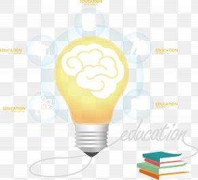Vector Painted Light Bulb And Brain - Light Euclidean Vector Agy PNG