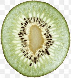 Kiwi Image Fruit Kiwi Pictures Download - Kiwifruit Download Clip Art PNG