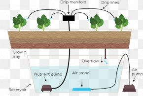 Drip Irrigation - Hydroponics Drip Irrigation Ebb And Flow Garden Agriculture PNG
