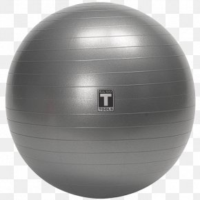 Gym Ball Free Download - Exercise Ball Physical Exercise Physical Fitness Fitness Centre Balance PNG