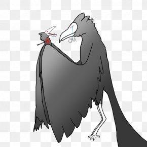 Bird - Flightless Bird Character Beak White PNG