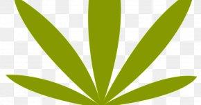 Leaf - Leaf Grasses Plant Stem Font Text Messaging PNG