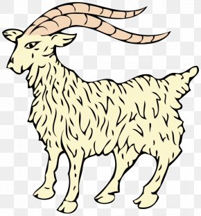 Istriana Goat Bagot Goat Russian White Goat PNG