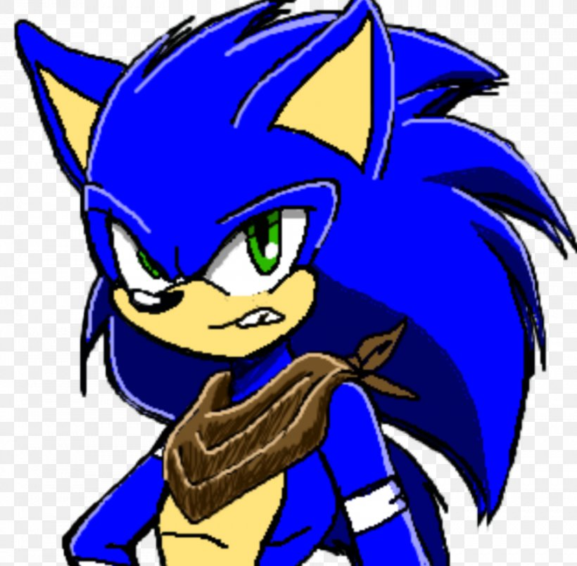 Sonic Boom Shadow The Hedgehog Tails Amy Rose Sonic The Hedgehog Png 902x886px Watercolor Cartoon Flower