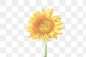 Artificial Flower Pollen - Artificial Flower PNG