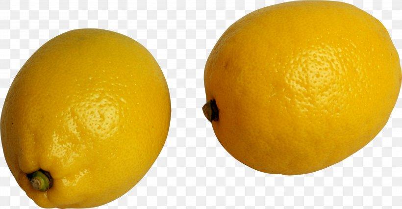 Lemon, PNG, 3000x1561px, Lemon, Citric Acid, Citron, Citrus, Food Download Free