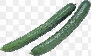 Cucumber - Spreewald Gherkins Pickled Cucumber Mass PNG