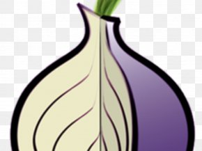 Tors - The Tor Project, Inc .onion Onion Routing Web Browser PNG