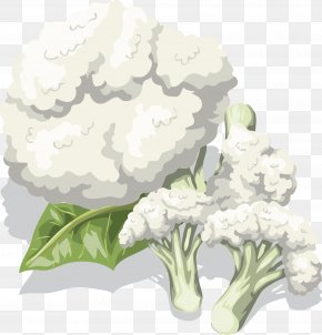 Cauliflower Vector - Cauliflower Bell Pepper Vegetable Broccoli PNG