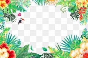 Summer Flowers And Birds - Tropics Tropical Rainforest PNG