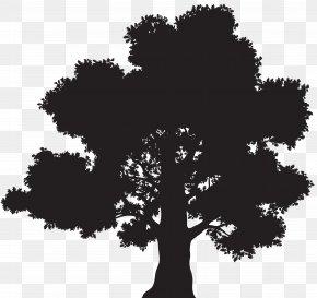 Tree Silhouette Clip Art - Oak Silhouette Tree Clip Art PNG