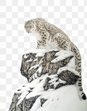 Alpine Snowflakes On The Snow Leopard Paintings - The Snow Leopard Tiger Lion Felidae PNG