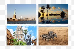 United States - Tourism Tourist Attraction Desktop Wallpaper United States Vacation PNG