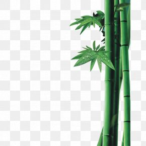 Bamboo Morning Dew - Bamboo Charcoal Anti-gravity Yoga Sales PNG