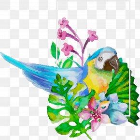 Hummingbird Plant - Hummingbird PNG