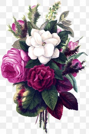Herbaceous Plant Magnolia - Bouquet Of Flowers Drawing PNG