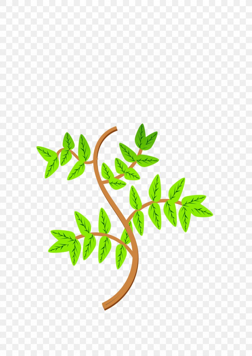 Branch Leaf Tree Clip Art, PNG, 1697x2400px, Branch, Area, Autumn Leaf Color, Canopy, Flora Download Free