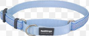 Blue Collar - Dog Collar Dingo Martingale PNG