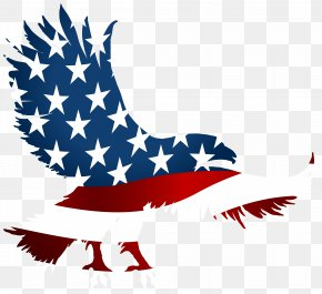 Eagle Birthday Cliparts - Flag Of The United States T-shirt American Eagle Outfitters Clip Art PNG