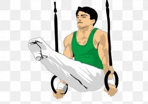 Gymnastics FIG. - Rhythmic Gymnastics Gymnastics At The 2012 Summer Olympics International Federation Of Gymnastics Clip Art PNG