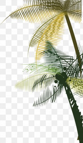 Vector Fashion Hand Painted Side Palm Tree - Coconut Tree Euclidean Vector PNG