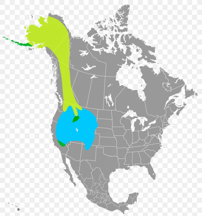 United States Clip Art, PNG, 960x1024px, United States, Americas, Map, North America, Organism Download Free