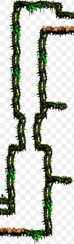 Leaf - Pine Leaf Plant Stem Line Font PNG