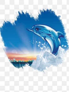 Dolphin - Dolphin Poster U6c55u5934u5e02u4e09u8054u978bu4e1au6709u9650u516cu53f8 Innovation PNG
