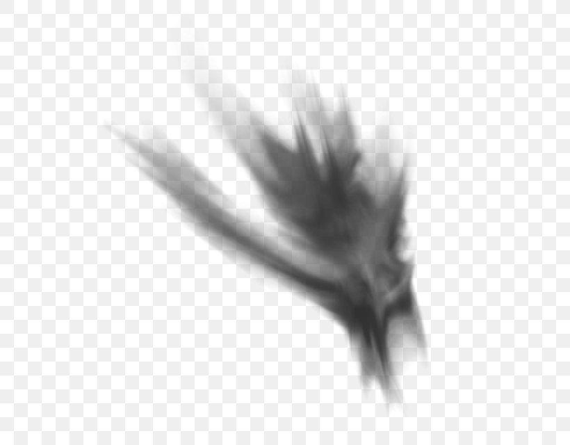 Psd Clip Art Smoke Desktop Wallpaper, PNG, 640x640px, Smoke, Blackandwhite, Cigarette, Closeup, Feather Download Free