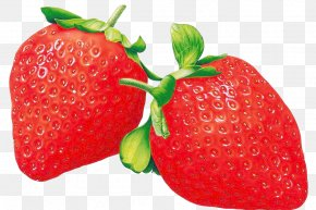 Strawberry,fruit,Free Pull - Multimedia Projectors Red Auglis Pre-school Kindergarten PNG