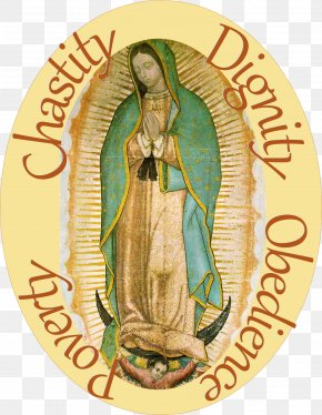 Basilica Of Our Lady Of Guadalupe Our Lady Of Fátima Our Lady Of Zeitoun Marian Apparition PNG