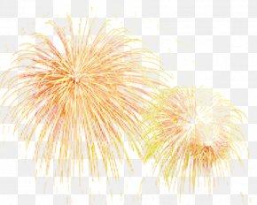 Fireworks Effect - Fireworks Firecracker PNG