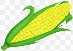 Corn On Cob Clip Art - Corn On The Cob Maize Sweet Corn Clip Art PNG
