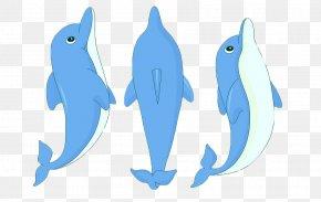 Dolphin,animal,lovely - Dolphin Cartoon Clip Art PNG