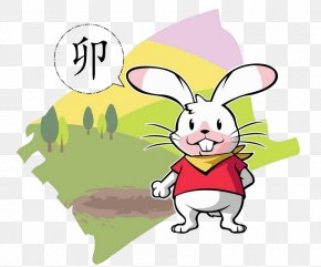Cute Little Rabbit Picture - Rabbit Chinese Zodiac PNG
