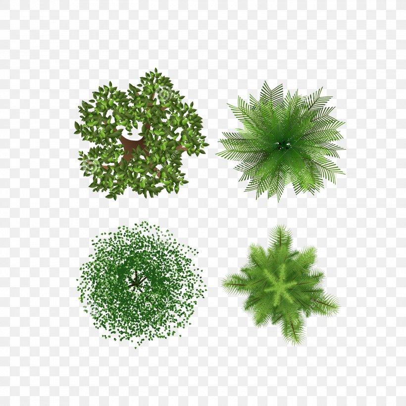 Tree, PNG, 3000x3000px, Tree, Grass, Green, Landscape Design, Leaf Download Free