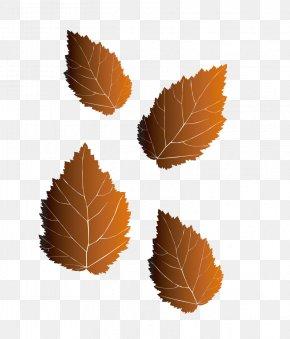 Leaf - Leaf Illustration PNG