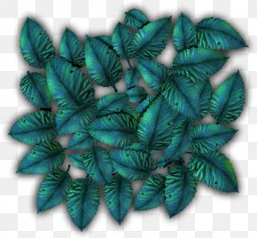 Tropical Plants - Turquoise Leaf PNG