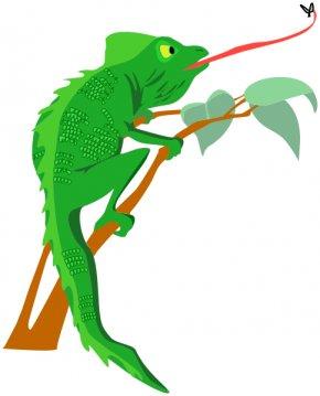 Charlemagne Cliparts - Chameleons Lizard Royalty-free Clip Art PNG