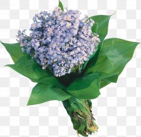 Lilac Flower - Flower Bouquet Scorpion Grasses Garden Roses Blue PNG
