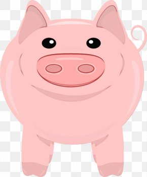 Smile Domestic Pig - Cartoon Pink Clip Art Snout Suidae PNG