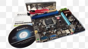 Computer - Graphics Cards & Video Adapters Motherboard Computer Hardware Computer System Cooling Parts PNG